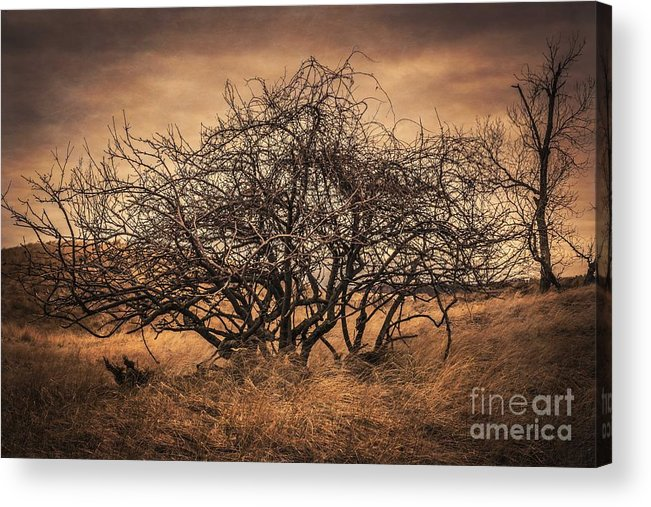 Dark Acrylic Print featuring the photograph Dangerous Dunes by Jay Luptak