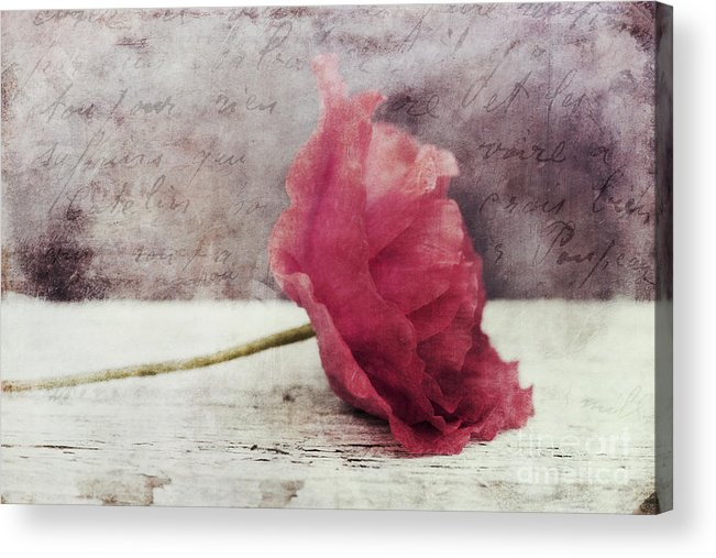 Poppy Acrylic Print featuring the photograph Decor Poppy Horizontal by Priska Wettstein
