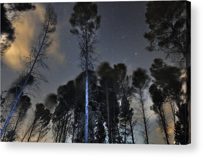 Astrophotography Acrylic Print featuring the photograph Deep Forest At Night by Guido Montanes Castillo