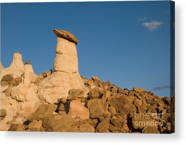 Hoodoos Acrylic Print featuring the photograph Desert Rock Garden by Kate Sumners