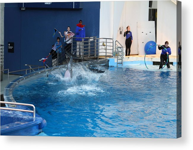 Inner Acrylic Print featuring the photograph Dolphin Show - National Aquarium In Baltimore Md - 121292 by DC Photographer