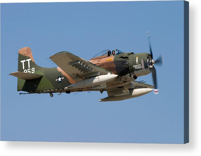 3scape Acrylic Print featuring the photograph Douglas Ad-4 Skyraider by Adam Romanowicz