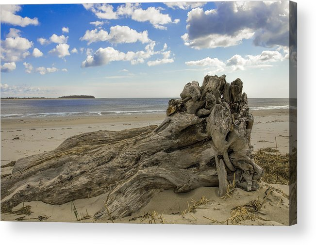 Crane Estate Acrylic Print featuring the photograph Driftwood  by David Stone