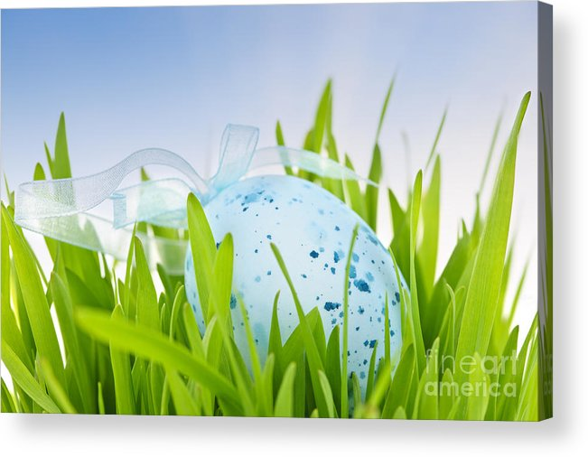 Easter Acrylic Print featuring the photograph Easter Egg In Grass by Elena Elisseeva