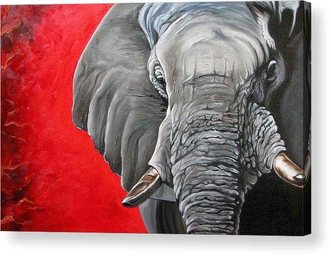 Wildlife Acrylic Print featuring the painting Elephant by Ilse Kleyn