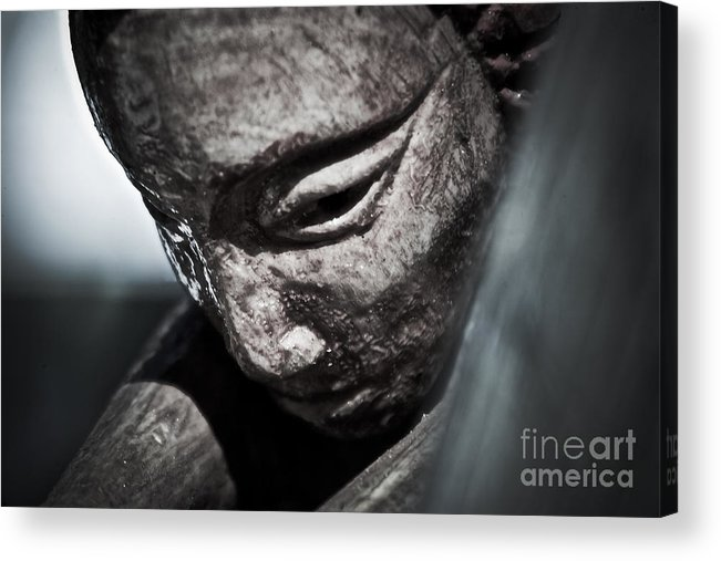 Acrylic Print featuring the photograph Face by Greg Sampson