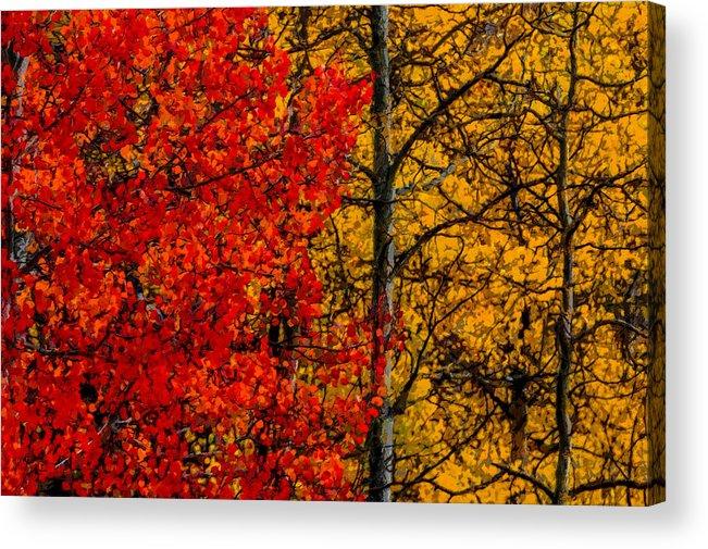 Autumn Acrylic Print featuring the digital art Fall Colors Dp by Ernie Echols