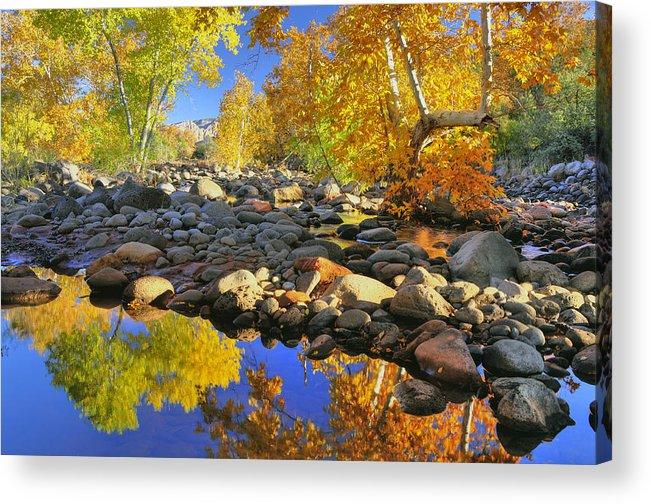 Fall Acrylic Print featuring the photograph Fall In Oak Creek by Dan Myers