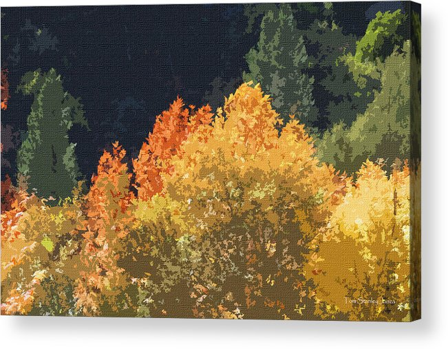 Fall Leave On The East Verde River Acrylic Print featuring the photograph Fall Leave On The East Verde River by Tom Janca