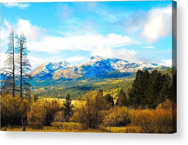 Autumn Acrylic Print featuring the photograph Fall Season In The Sierras by Don Bendickson