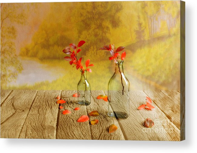 Art Acrylic Print featuring the photograph Fallen Leaves by Veikko Suikkanen