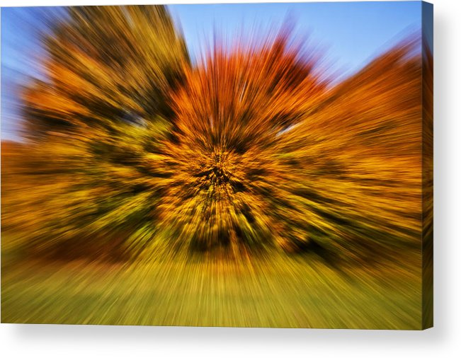 Fall Acrylic Print featuring the photograph Fallexplosion by Thomas Schlueter