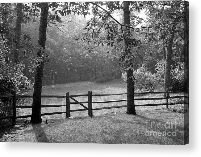Black & White Acrylic Print featuring the photograph Fence by Tony Cordoza