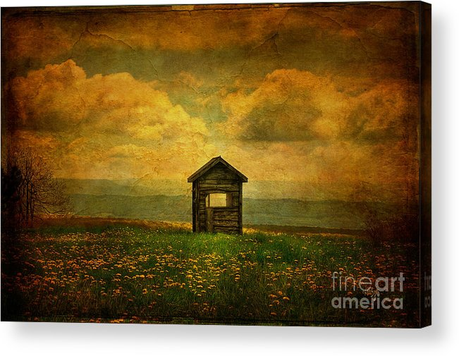 Shed Acrylic Print featuring the photograph Field Of Dandelions by Lois Bryan