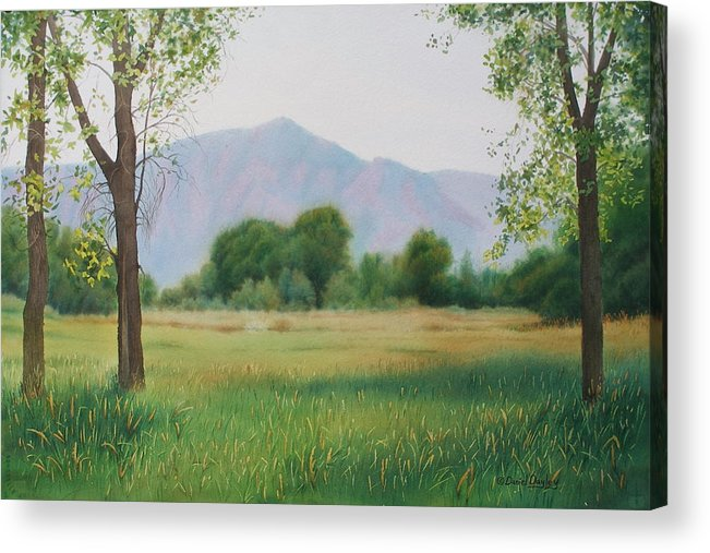Watercolor Acrylic Print featuring the painting Flatirons From Dry Creek Meadow by Daniel Dayley