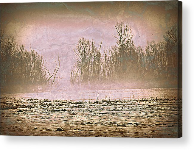 Landscape Acrylic Print featuring the photograph Fog Abstract 2 by Marty Koch