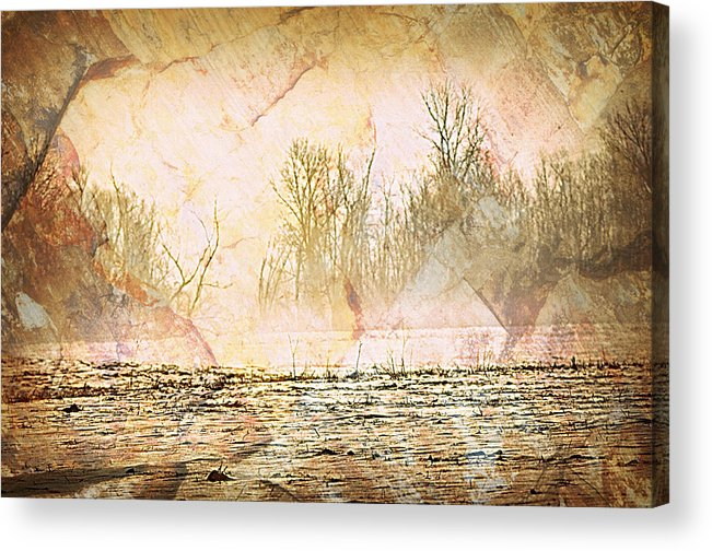 Landscape Acrylic Print featuring the photograph Fog Abstract 4 by Marty Koch