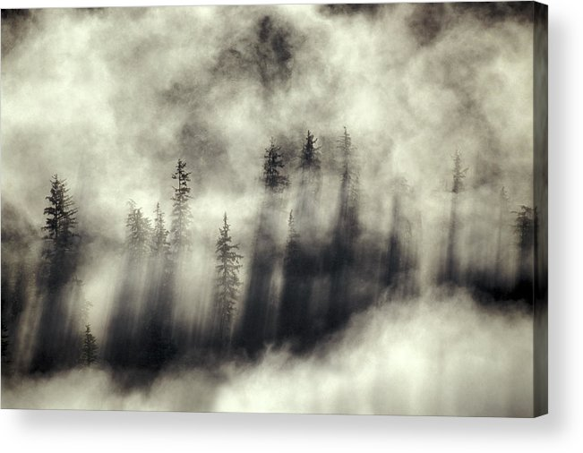 Moody Acrylic Print featuring the photograph Foggy Landscape Stephens Passage by Ron Sanford