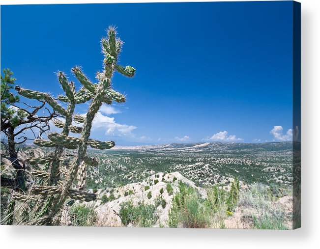 Bajada Acrylic Print featuring the photograph foothills of the Sangre De Christo Mountains by Jim Pruitt