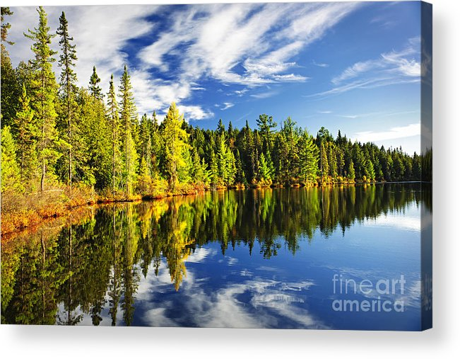 Lake Acrylic Print featuring the photograph Forest Reflecting In Lake by Elena Elisseeva