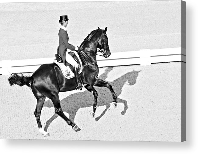 Horse Acrylic Print featuring the photograph Fourosix by Alice Gipson