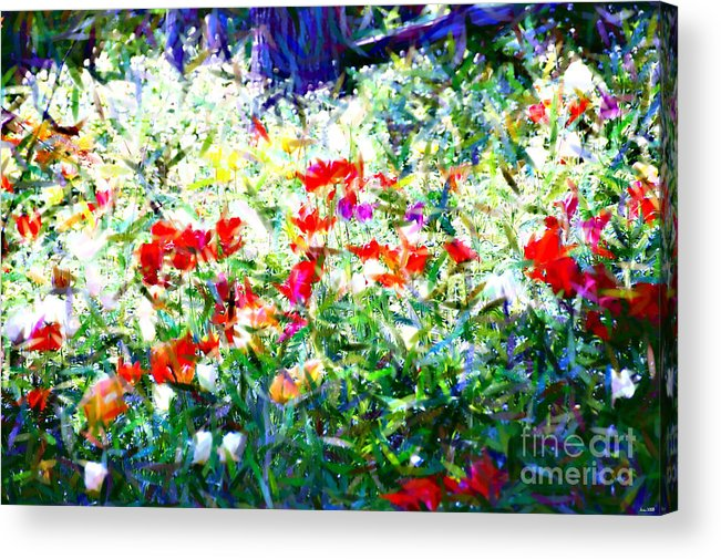 Garden Acrylic Print featuring the photograph Garden Impressionism by Elaine Manley