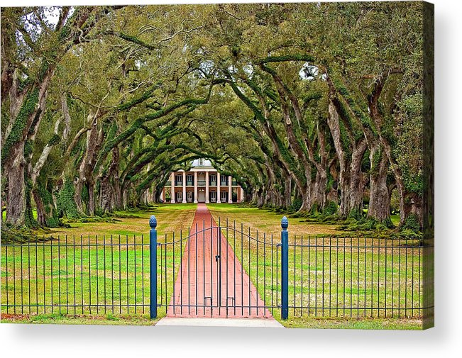 Oak Alley Plantation Acrylic Print featuring the photograph Gateway To The Old South by Steve Harrington