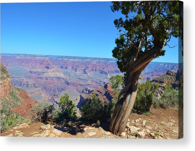 Landscape Acrylic Print featuring the photograph Grand Canyon 4 by Thomas Gregg Hoctor