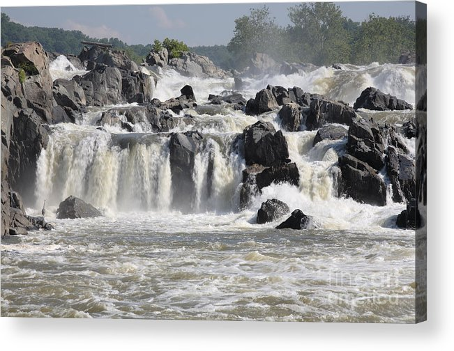 Potomac Acrylic Print featuring the photograph Great Falls Of The Potomac River by William Kuta