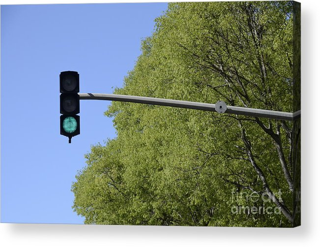 Authority Acrylic Print featuring the photograph Green Traffic Light By Trees by Sami Sarkis