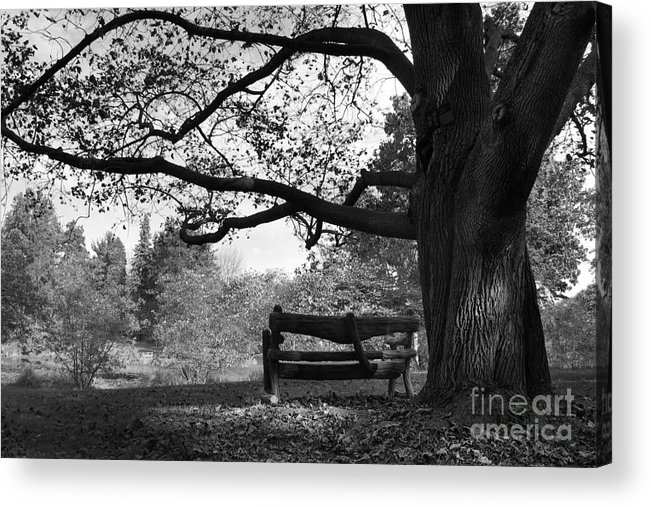 Chargers Acrylic Print featuring the photograph Hillsdale College Slayton Arboretum by University Icons