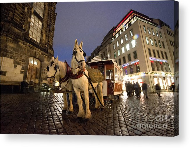 Horses Acrylic Print featuring the photograph Horse Tram by Rob Hawkins