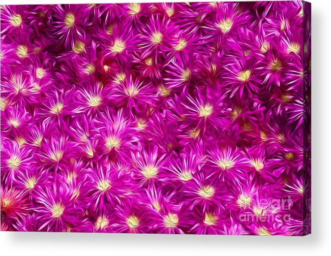 Flower Acrylic Print featuring the digital art Hostile Takeover by Kenneth Montgomery