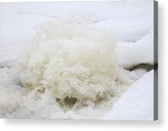 Ice Acrylic Print featuring the photograph Ice Cake In Nature by Charline Xia
