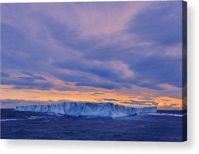 Ice Acrylic Print featuring the photograph Ice Island by Tony Beck