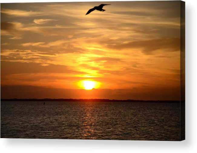 Corpus Christi Acrylic Print featuring the photograph In The Evening by Michael Anthony