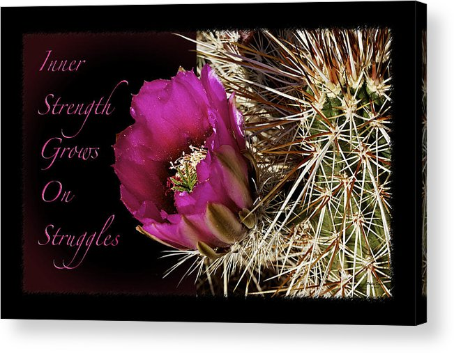 Flower Acrylic Print featuring the photograph Inner Strength by Phyllis Denton