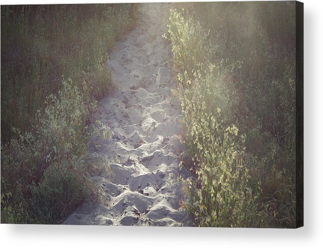 Ma-l'el Dunes Acrylic Print featuring the photograph Into The Mist by Hannah Kirchiro