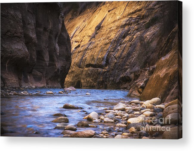 Nature Acrylic Print featuring the photograph Into The Narrows by Jennifer Magallon