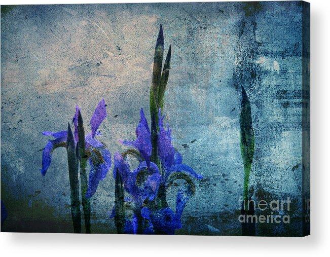 Iris Acrylic Print featuring the photograph Irises by Lali Kacharava