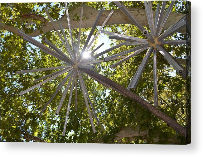 Iron Sculpture Acrylic Print featuring the photograph Iron Wood by Thomas Gregg Hoctor