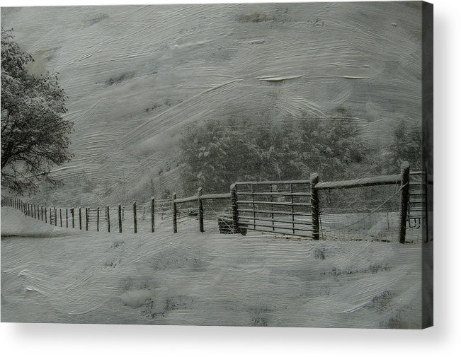 Snow Acrylic Print featuring the photograph January Storm by Kathy Jennings