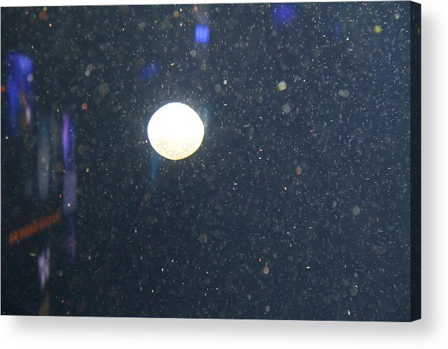 Inner Acrylic Print featuring the photograph Jellyfish - National Aquarium In Baltimore Md - 121237 by DC Photographer