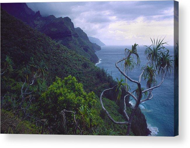 Beginnings Acrylic Print featuring the photograph Kalalau Beginnings by Morris McClung