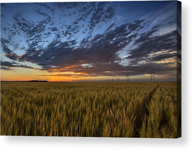 Kansas Acrylic Print featuring the photograph Kansas Color by Thomas Zimmerman