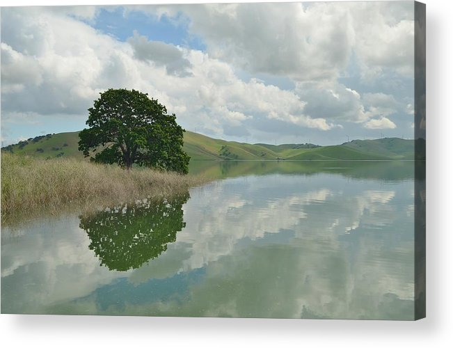Refledtion Acrylic Print featuring the photograph Last Look by Daniel McKenzie