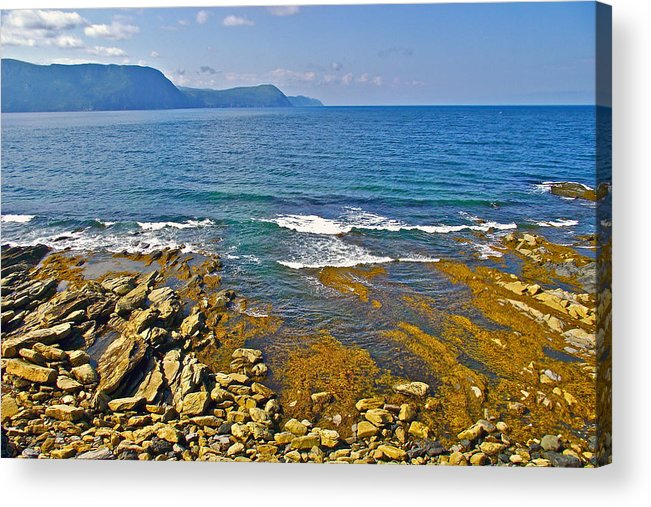 Lobster Cove From Green Point Coastal Trail In Gros Morne Np Acrylic Print featuring the photograph Lobster Cove In Rocky Harbour-nl by Ruth Hager