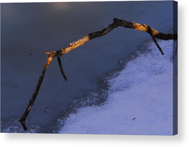 Winter Acrylic Print featuring the photograph Lone Branch 2 by Jim Vance