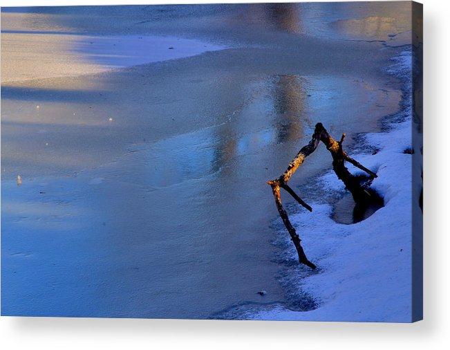 Winter Acrylic Print featuring the photograph Lone Branch by Jim Vance