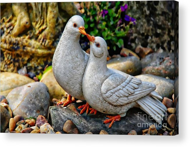 Nature Acrylic Print featuring the photograph Love by Daniela White